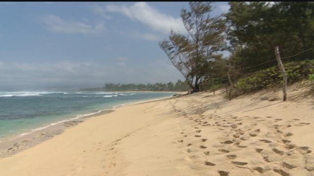 Teen nudism beach