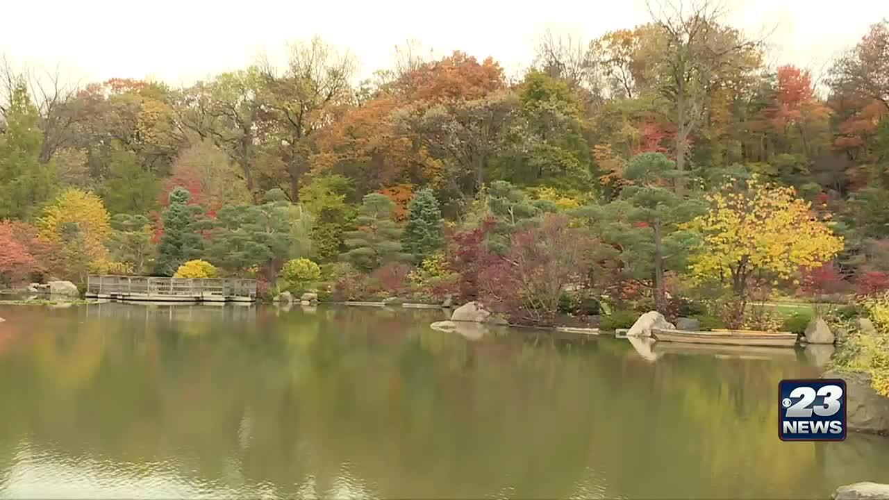 Anderson Japanese Gardens Hosts Spooktacular Haunts Week